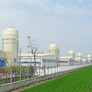 寬敞與乾淨的契作廠,給土雞最舒適的環境