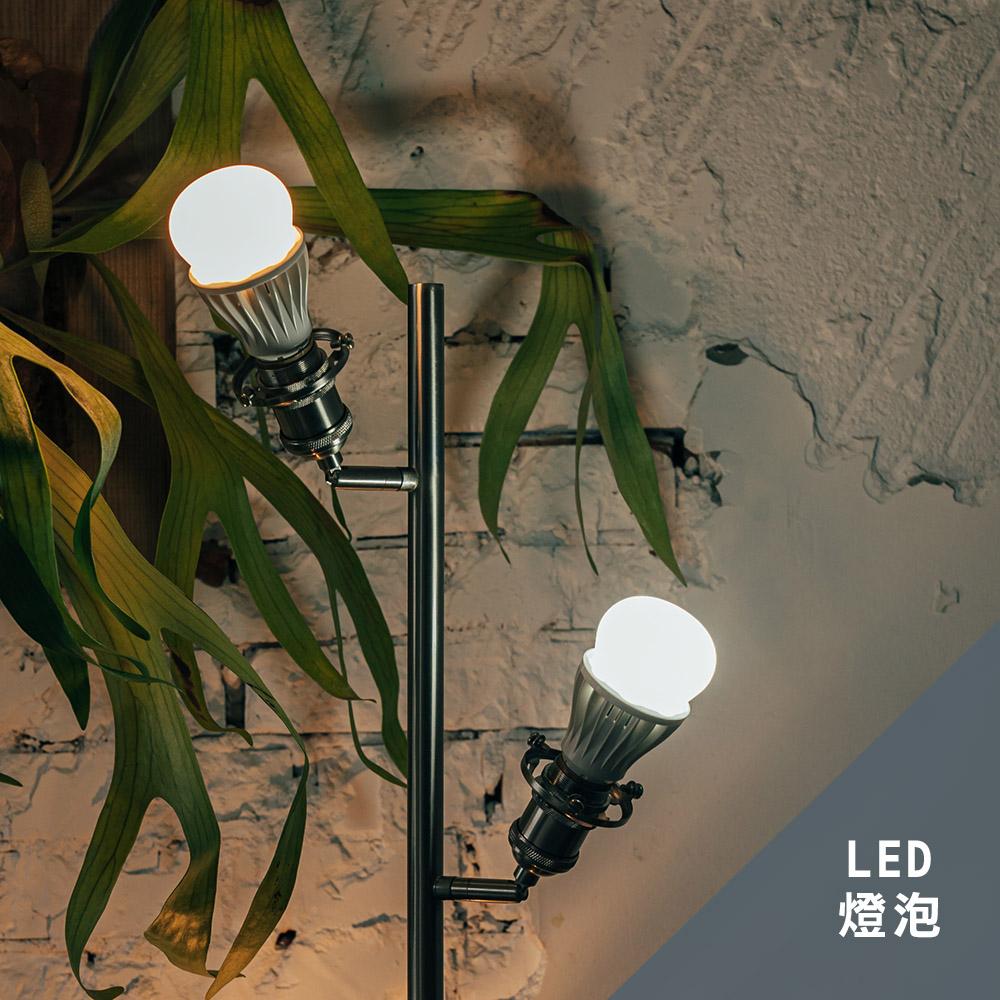 平板燈/燈泡