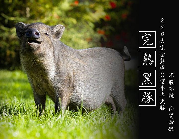 溫體足齡黑豚