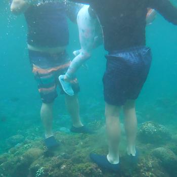 你腳下踩的不是岩石,是珊瑚