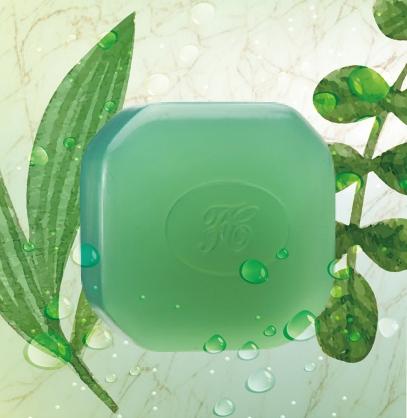 日本原裝進口【FERIZ 膚麗姿】洗面皂