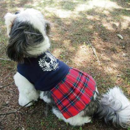 【PET'S REPUBLIC】CoCoBANANA-格紋洋裝