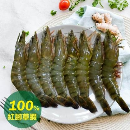 鮮凍海草蝦/8尾