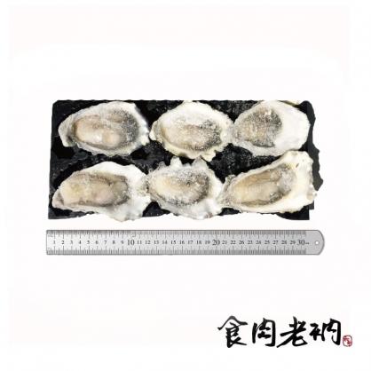 「食肉老衲」5DO 冷凍布列塔尼生蠔 No.2 (6入)