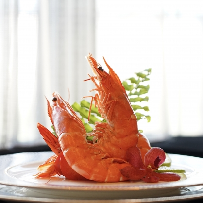 Royal 天王蝦 ❮約8-10隻❯