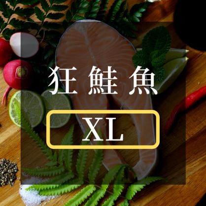 頂級超厚切鮭魚 ❮XL❯