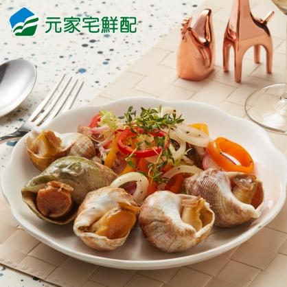 【新品上市】法國海螺(500g/盒)(約12顆)