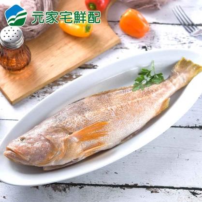 鮮嫩石首魚(320g±10%/尾)~三牲拜拜首選