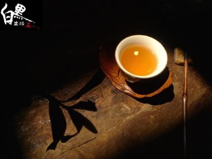 生活茶引體驗席