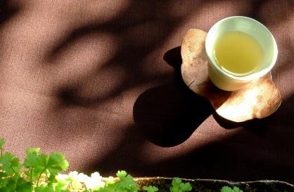 2020/1/11 生活茶引體驗席