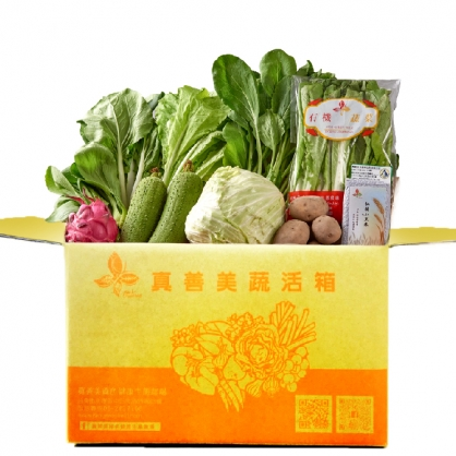 蔬活箱-15包有機蔬菜
