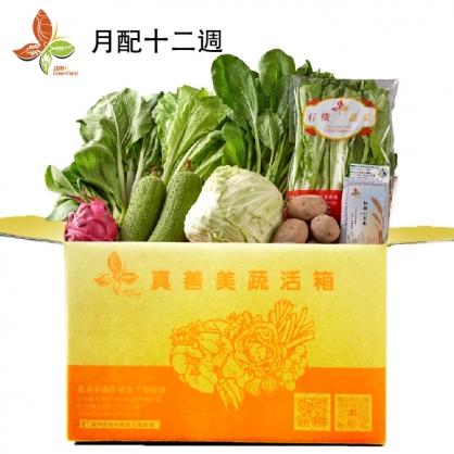 【真善美】蔬活箱-月配型(12週)