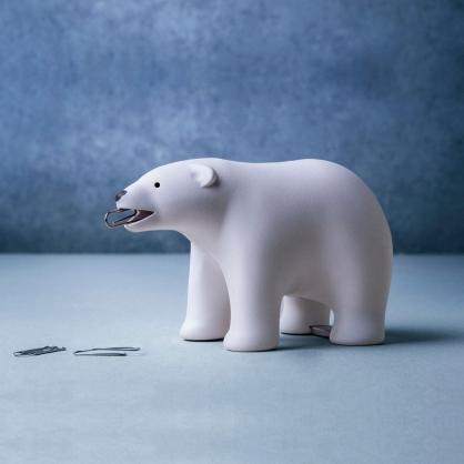Qualy 大熊出沒 膠帶組 (白色)