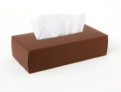 Tissue Box Case 面紙盒(咖啡)