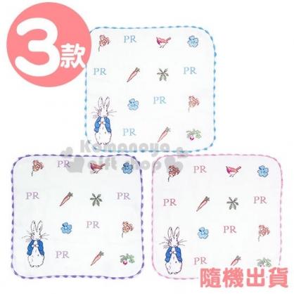 〔小禮堂〕彼得兔 純棉紗布圓角小方巾《3款隨機.粉/紫/藍》25x25cm.毛巾.手帕