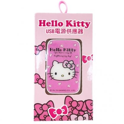 小禮堂 Hello Kitty 方形雙孔USB電源供應器 電源轉接頭 充電頭 充電器 (粉 大臉)