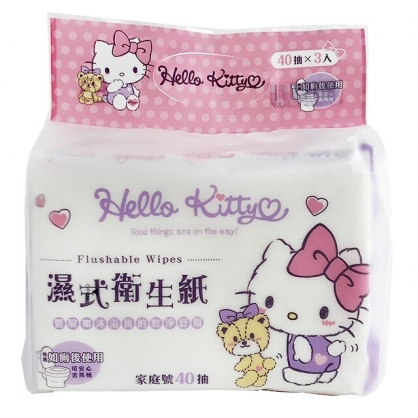 小禮堂 Hello Kitty 40抽濕式衛生紙包組 濕式面紙 濕紙巾 柔濕巾 可丟馬桶 (3入 紫 小熊)