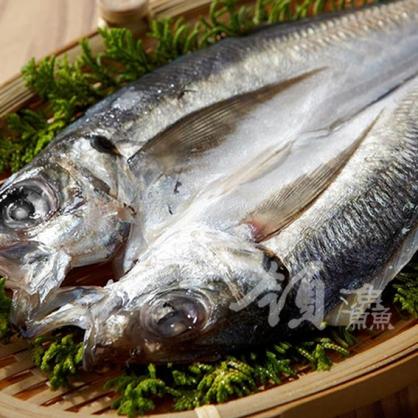 一夜干竹筴魚
