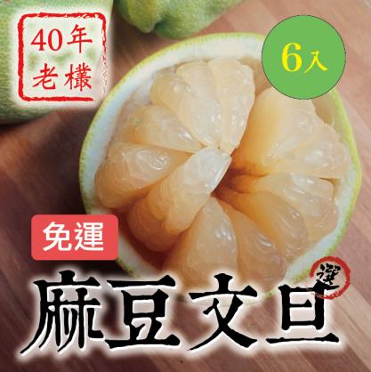 40年老欉麻豆文旦_百年果園_細米軟嫩甜_送禮首選