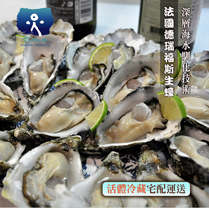 Special N1.10顆DREVICI Oyster法國德瑞福斯生蠔Special N1.單顆