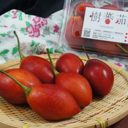 【春霖山園】盒裝樹蕃茄(紅寶) 600~630公克 六盒