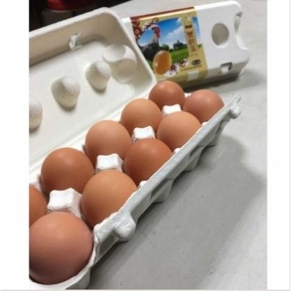 【和豐雞場】豐鮮蛋12盒(10顆/盒)