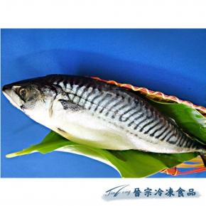 【預訂品】挪威鯖魚原料(10Kg/件)