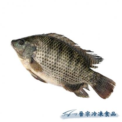 吳郭魚(約80尾/10kg/件)