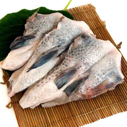 台灣鯛魚下巴