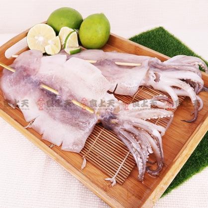 特大阿根廷魷魚串
