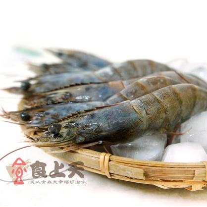 藍鑽生白蝦(約16-18尾/600g/盒)