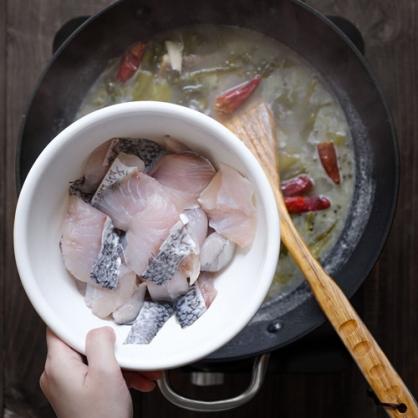 海鱸魚 (大) 500g 單隻