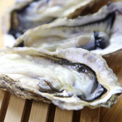 日本冷凍全殼生蠔 1kg 約7~10顆 單包