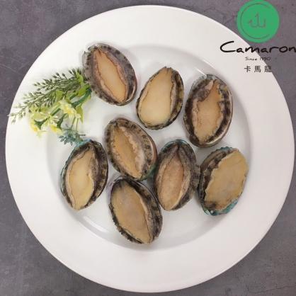 頂級外銷級 活凍帶殼鮑魚 1公斤/約20顆