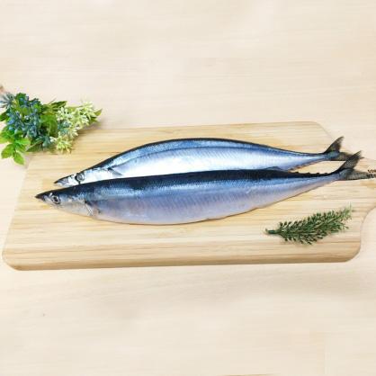野生肥厚秋刀魚400公克/3入/包