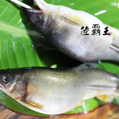 ☆母香魚☆ 爆卵 爆蛋母香魚 7入/包 【 陸霸王】