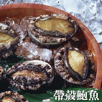 ☆帶殼冷凍鮑魚5顆☆小家庭最適用 細正港ㄟ鮑魚啦!!【陸霸王】