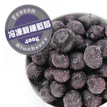 冷凍種栽種藍莓400g