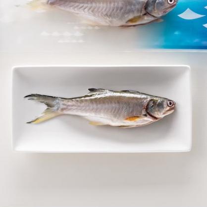 產銷履歷午仔魚 買3送1