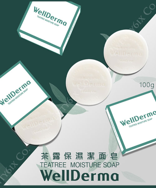 ★韓國 WellDerma 夢蝸 ★茶露保濕潔面皂 100g (溫和 & 保濕)