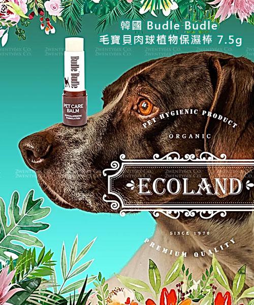 ★韓國 AHC ★ Premium B5 玻尿酸保濕精華滋潤護手霜 30ml