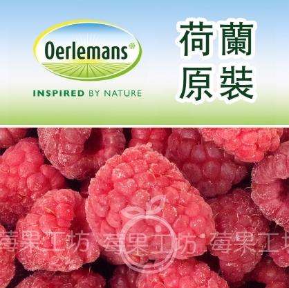 【莓果工坊】荷蘭原裝進口覆盆子