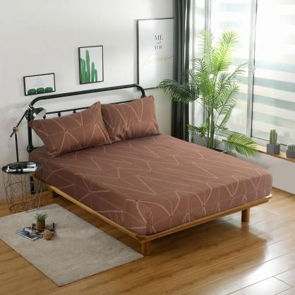 歐情雅點精梳棉三件式床包組-加大