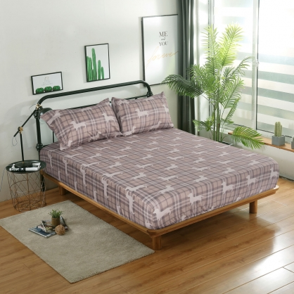 古典麥丁精梳棉三件式床包組-雙人