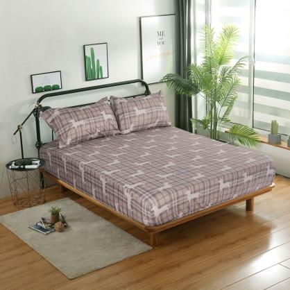 古典麥丁精梳棉三件式床包組-加大