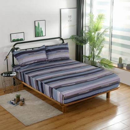 愛斯卡諾精梳棉三件式床包組-加大