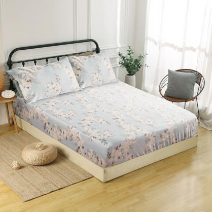 愛秘莉耶60支紗天絲三件式床包組-加大