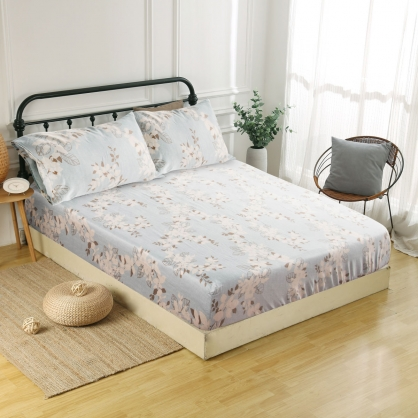 愛秘莉耶60支紗天絲三件式床包組-特大
