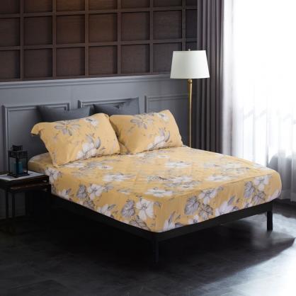 金風秋染60支紗天絲三件式床包組-加大