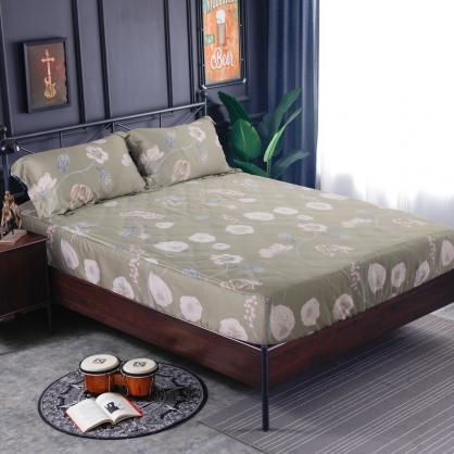 普菲希諾60支紗天絲三件式床包組-加大